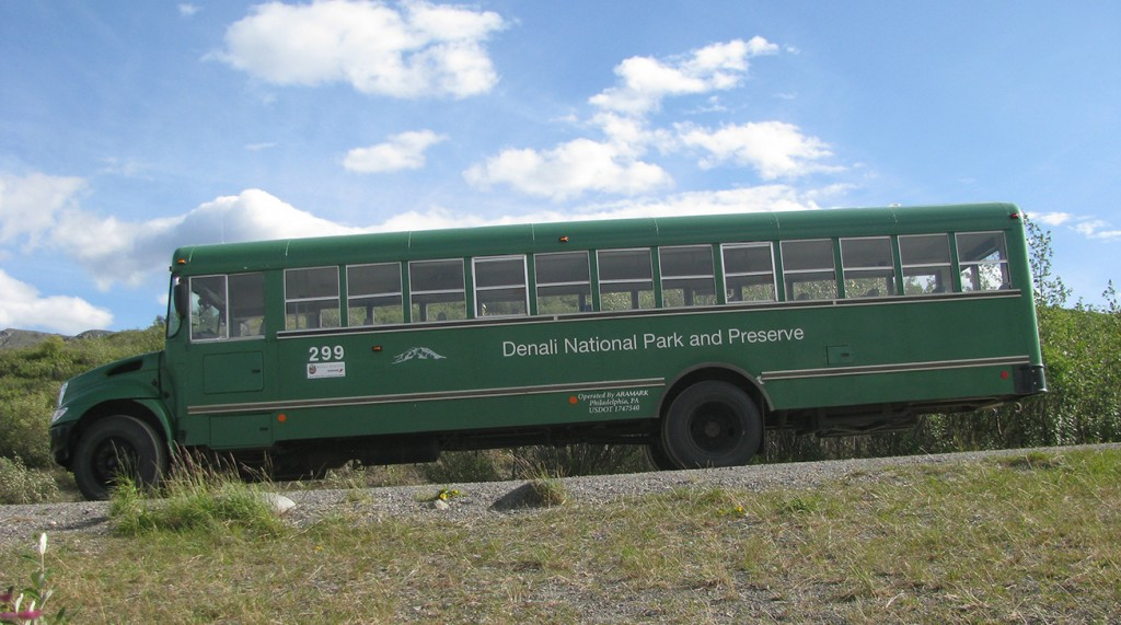 green bus in Denali National Park