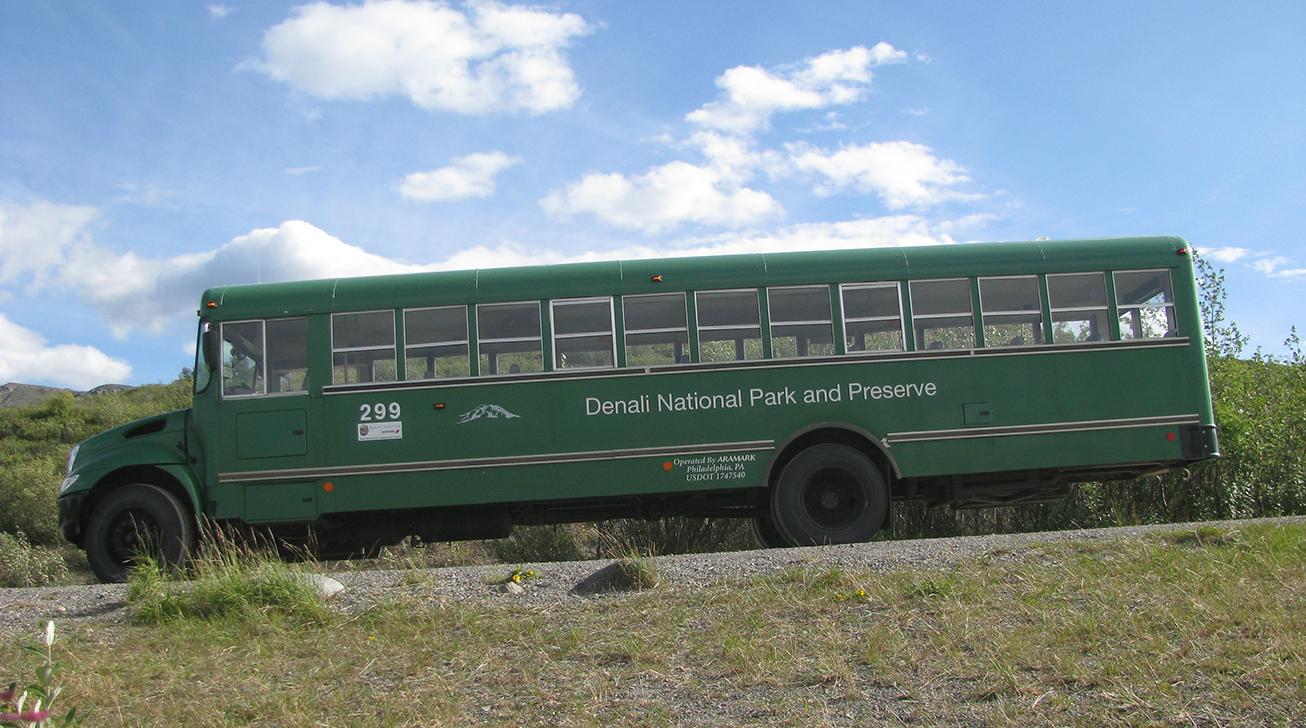 green bus in Denali National Park
