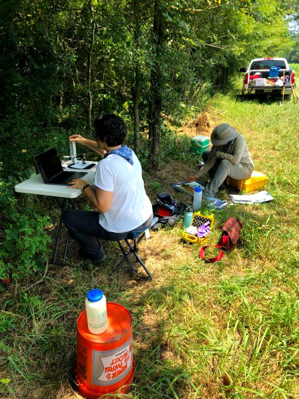 Lisa Davis and PhD student Rachel Lombardi processing soil samples in the field